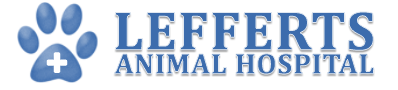 Lefferts Animal Hospital